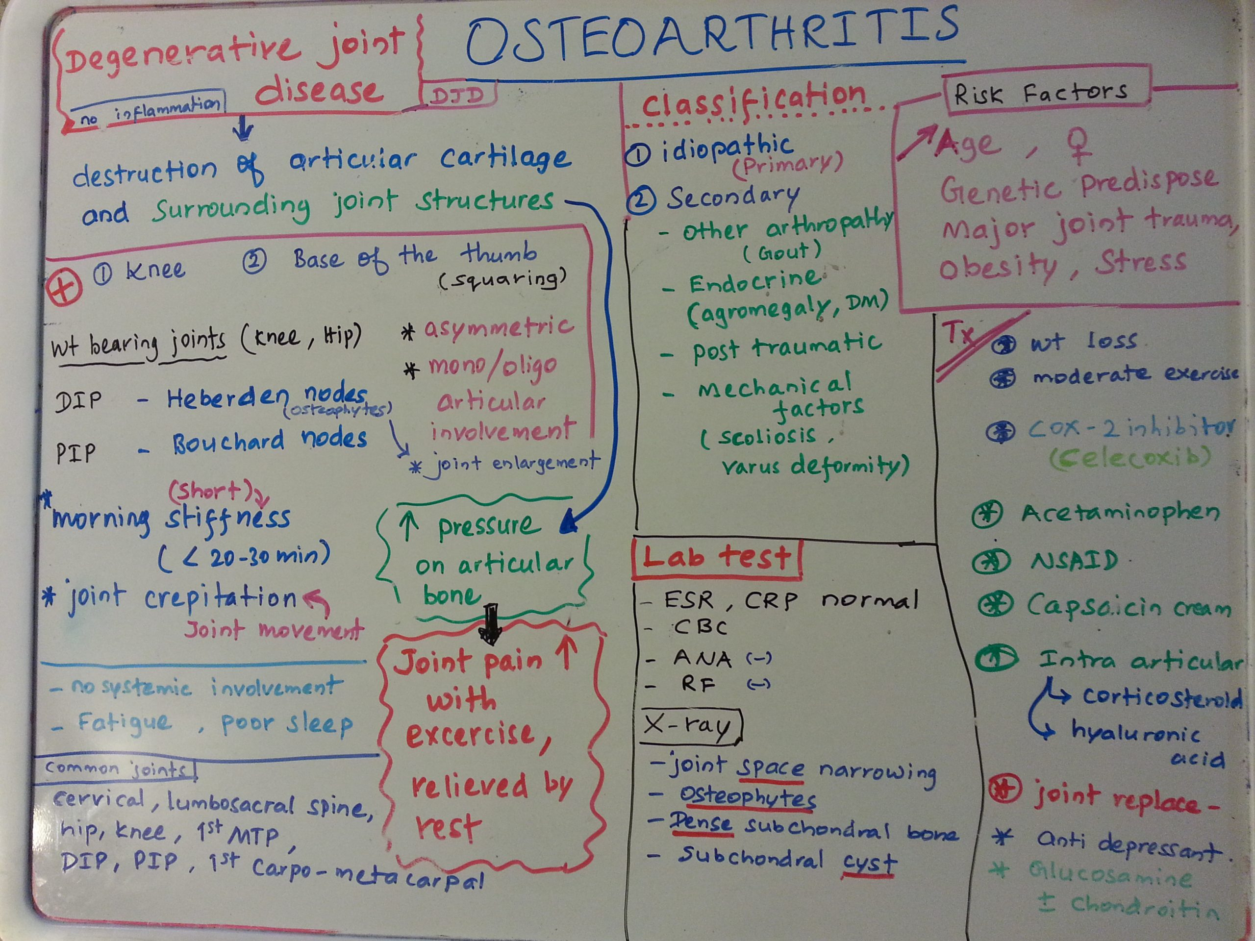 osteo-arthritis-whiteboard-tutorial